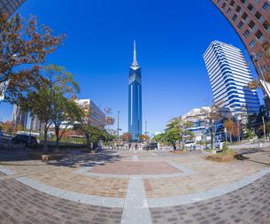福岡県 風景 福岡タワー 昼景の写真素材 [FYI04780698]