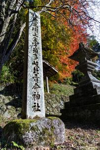 飛鳥川上坐宇須多伎比売命神社 紅葉の写真素材 [FYI04781028]