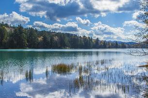 晩秋のオンネトー湖畔の写真素材 [FYI04781164]