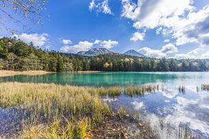晩秋のオンネトー湖畔から雌阿寒岳・阿寒富士を望むの写真素材 [FYI04781170]