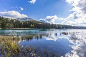 晩秋のオンネトー湖畔から雌阿寒岳・阿寒富士を望むの写真素材 [FYI04781178]
