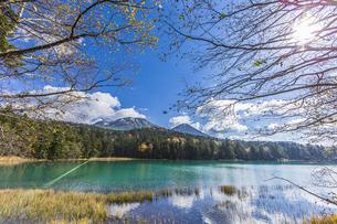 晩秋のオンネトー湖畔から雌阿寒岳・阿寒富士を望むの写真素材 [FYI04781180]