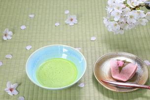桜餅と抹茶の写真素材 [FYI04781343]