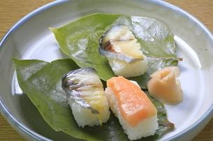柿の葉寿司の写真素材 [FYI04781356]