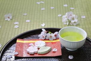 春のお茶と葛菓子の写真素材 [FYI04781363]