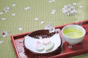 春のお茶と葛菓子の写真素材 [FYI04781364]