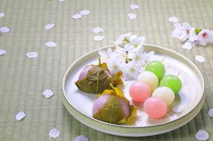 春の和菓子とさくらの花びらの写真素材 [FYI04781366]