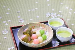 春の和菓子とさくらの花びらの写真素材 [FYI04781368]