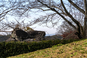 明日香村石舞台古墳 紅葉の写真素材 [FYI04781845]
