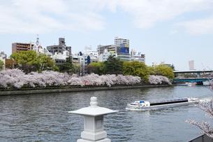 大川の桜並木と水上バスの写真素材 [FYI04781856]