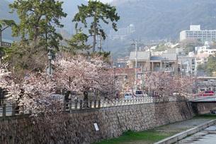 芦屋川と桜並木の写真素材 [FYI04781878]