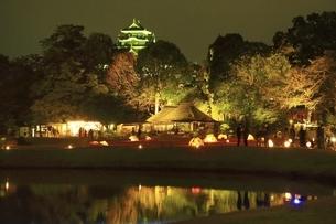 秋の幻想庭園 岡山後楽園の写真素材 [FYI04782021]