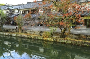 秋の倉敷美観地区の写真素材 [FYI04782038]