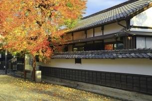秋の倉敷美観地区の写真素材 [FYI04782047]