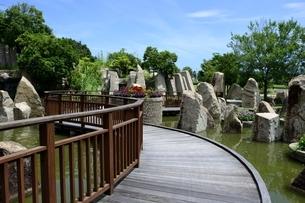 淡路島,国営明石海峡公園,滝のテラスの写真素材 [FYI04782184]
