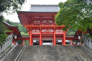 石段の上に建つ近江神宮の写真素材 [FYI04782274]