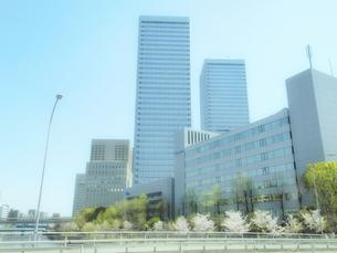 桜咲く大阪ビジネスパークの写真素材 [FYI04782286]