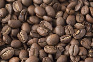 コーヒー豆の背景素材の写真素材 [FYI04782345]