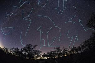 大台ヶ原より眺める初冬の夜空と星座線(合成)の写真素材 [FYI04782353]