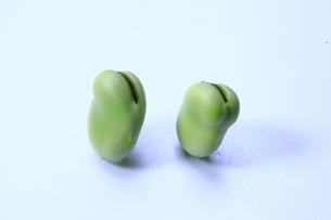 そら豆の写真素材 [FYI04782387]