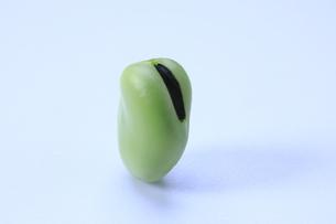 そら豆の写真素材 [FYI04782388]