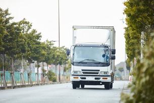 並木道を走る白いトラックの写真素材 [FYI04782634]