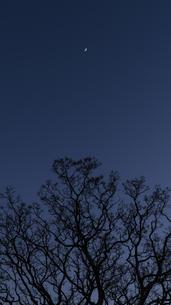 夜空に浮かぶ三日月の写真素材 [FYI04782969]