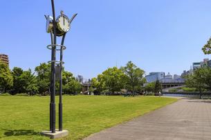 公園の芝生広場の写真素材 [FYI04782978]