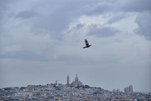 パリ、モンマルトルの風景と飛んでいる鳥、ロマンチックな風景の写真素材 [FYI04783162]