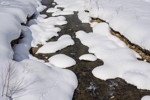早春の雪解けの沢の写真素材 [FYI04783493]