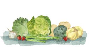 春野菜と苺の水彩画のイラスト素材 [FYI04783584]