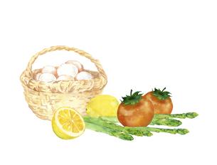 卵と野菜の水彩画のイラスト素材 [FYI04783585]