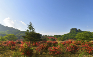 【 榛名山 】 つつじ咲く頃 スルス岩がある風景  の写真素材 [FYI04783613]