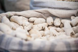 アンデスの乾燥ジャガイモ:モラヤの写真素材 [FYI04783660]