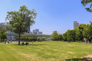 大阪・中之島公園の芝生広場の写真素材 [FYI04783677]