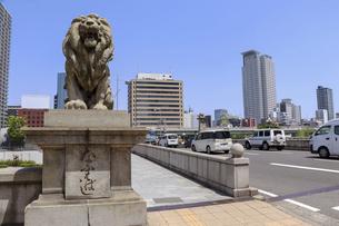 大阪・難波橋のライオン像の写真素材 [FYI04783679]
