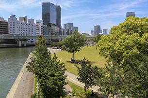 大阪・中之島公園の芝生広場の写真素材 [FYI04783682]