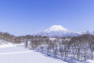 冬の羊蹄山の写真素材 [FYI04783685]