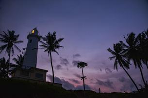 旅情を誘う世界遺産の街ゴールの夕暮れ。ヤシの木と灯台のシルエットの写真素材 [FYI04783715]