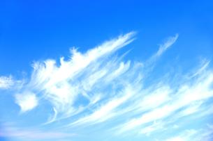 岐阜県 揖斐川町 青空に浮かぶ雲のオブジェの写真素材 [FYI04783823]