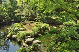 殿ケ谷戸庭園・次郎弁天池の写真素材 [FYI04783945]