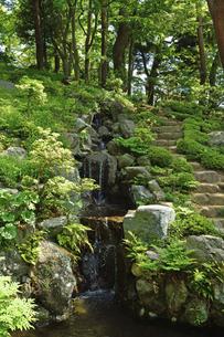 殿ケ谷戸庭園・次郎弁天池の写真素材 [FYI04783946]