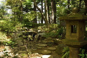 殿ケ谷戸庭園・石灯籠の写真素材 [FYI04783949]