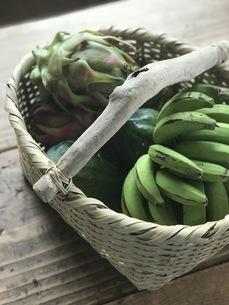 島バナナ、青パパイヤ、ドラゴンフルーツの写真素材 [FYI04784050]
