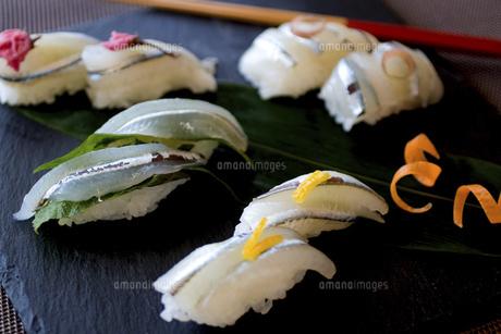 細魚の握り寿司の写真素材 [FYI04784085]