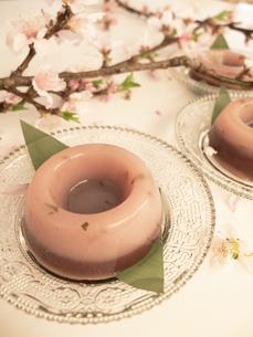 桜水ようかんの写真素材 [FYI04784089]