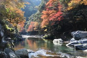 秋の清滝の写真素材 [FYI04784318]