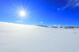 冬の鳥取砂丘 雪景色と空に太陽の写真素材 [FYI04784385]