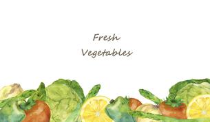 野菜のフレーム 水彩イラストのイラスト素材 [FYI04784390]