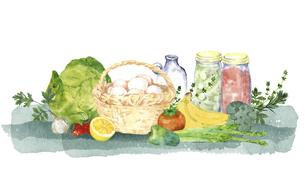 卵といろいろな食材の水彩画のイラスト素材 [FYI04784393]